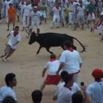 Running with the bulls JPG